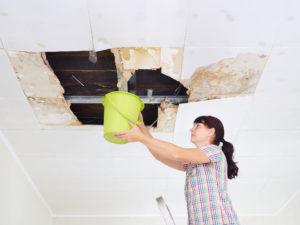 Leaking Roof St. Petersburg